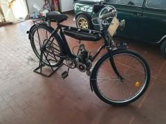 alcion-bicicletta-a-motore-